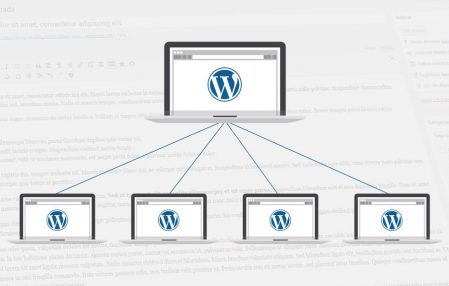 Cómo migrar Wordpress multisite a singlesite